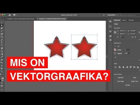 Mis on vektorgraafika?